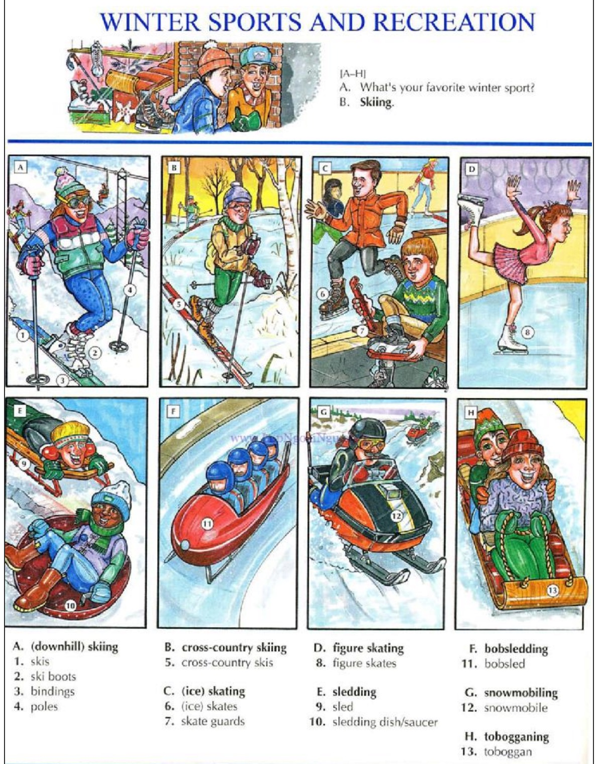 Picture Dictionary | Learning English in MetroWest | Page 2